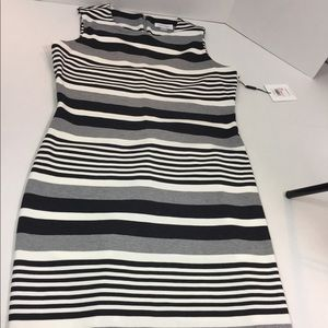 Women's New With Tags CALVIN KLEIN Dress 10